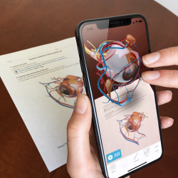 Download Human Anatomy Atlas 2019 For iPhone & iPad