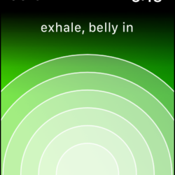Screenshot of Calm app on Apple Watch