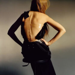 The back spine of gigi